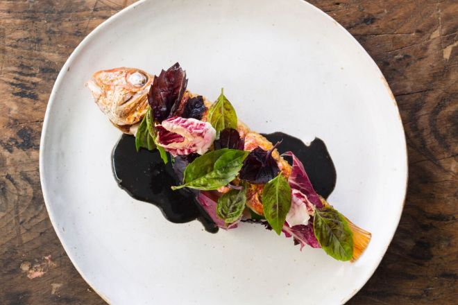 BBQ mullet with grilled radicchios and basil_preview